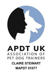 APDT_Logo_with_nameresize_300